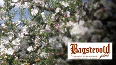 Bagstevoldgaard