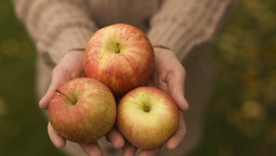 Epler i damehender