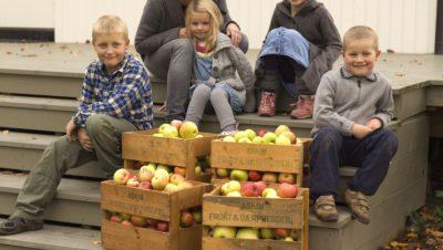 Store og små epleplukkere på trappa