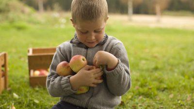 Barn med favnen full av epler