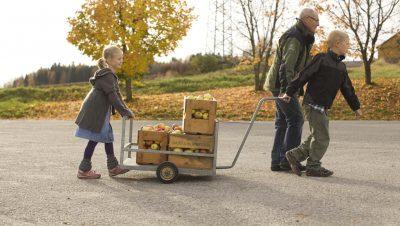 Bestefar og barn leverer epler
