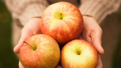 Epler i hånd